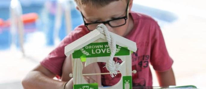 Crafting with kids: Fruit Slice Bird Feeder