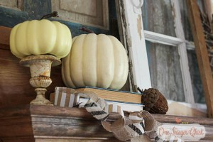 Rustic Neutral Fall Mantel 6 -OneKriegerChick.com