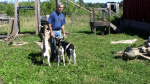 Farmer Steve Grover plays with his pygmy goats at Ridgeview Farms