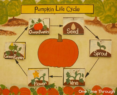Pumpkin Learning Activities for Preschoolers + Linky - One Time Through