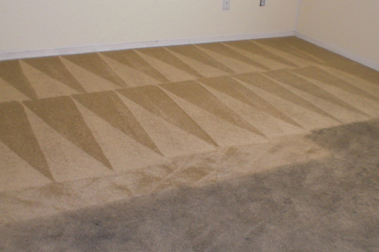 Carpet Cleaning Carpet Cleaning Oneway Property Restoration