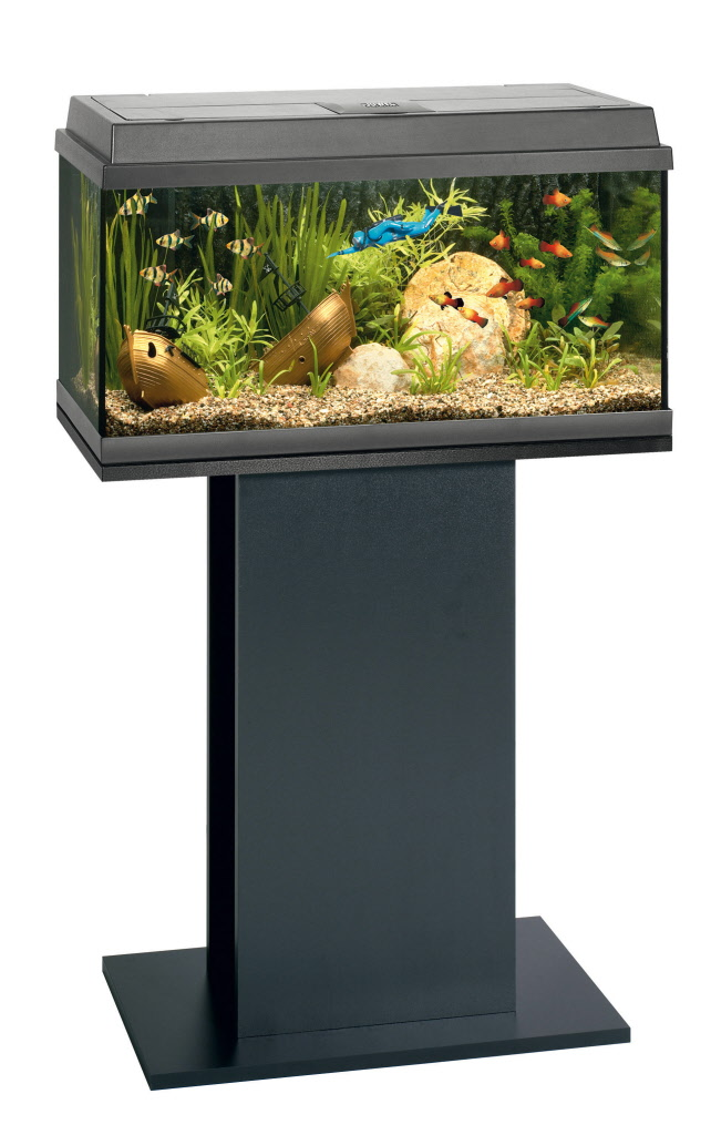 Pumpe Aquarium Aquaristik Aquariumkombinationen