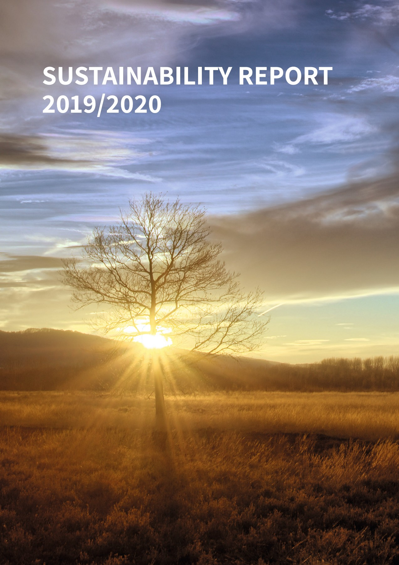 Sustainability Report 2020 Pages 1 50 Flip Pdf Download Fliphtml5