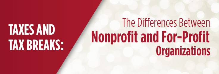 The Difference Between Nonprofits and For-Profit Companies - profit & loss template free