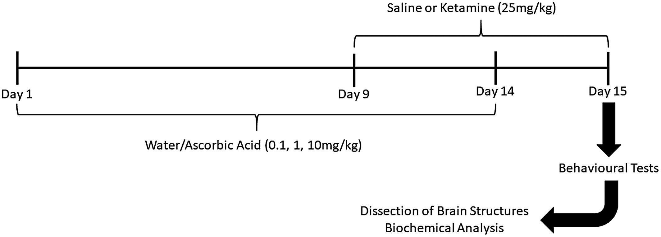 Ascorbic Acid Supplementation Attenuates Schizophrenia Like Symptoms In An Animal Model Induced By Ketamine Supp 2021 International Journal Of Developmental Neuroscience Wiley Online Library