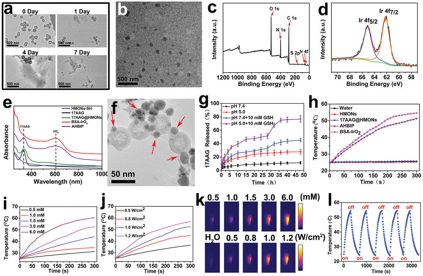 A Tumor Microenvironment Responsive Biodegradable Mesoporous Nanosystem For Anti Inflammation And Cancer Theranostics Wu 2020 Advanced Healthcare Materials Wiley Online Library