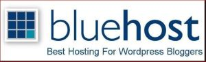 Blue Host-Best Hosting Company for WordPress Bloggers