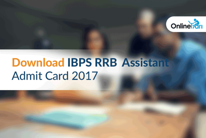 IBPS RRB Assistant Admit Card 2017: Download Call Letter now