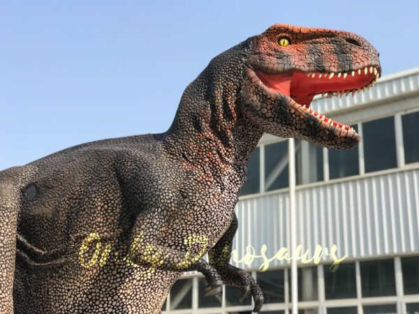 成人T-Rex-Dinosaur-Costume-For-Sale2-1