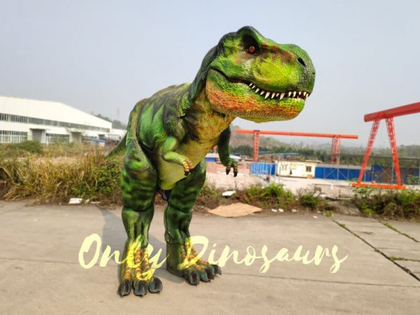 Giant-T-Rex-Costume-6M-LONG-3M-HIGH222