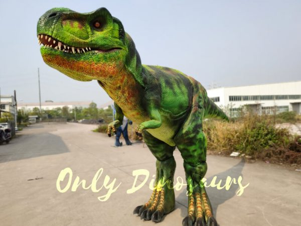 Giant-T-Rex-Costume-6M-Long-3M-High333