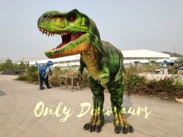 GIANT-T-REX-COSTUME-6M-LONG-3M-HIGH555