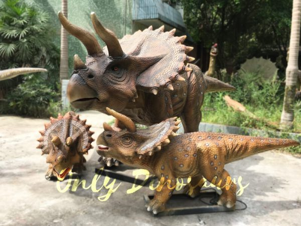 Realisitc-Animatronic-triceratops-Two-Babies-One-Adult11