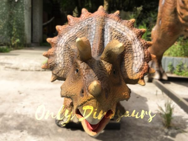 Realisitc-Animatronic-TricerAtops-Two-Babies-One-Adult6