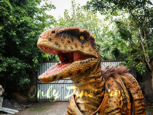 侏罗纪 - 公园 -  Dino-Costume-Hairy-Raptor111