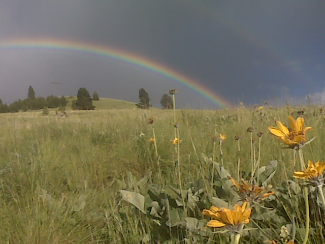 rainbow over Mount Jumbo in the Rattlesnake Valley of Missoula, Montana - on the horizon line