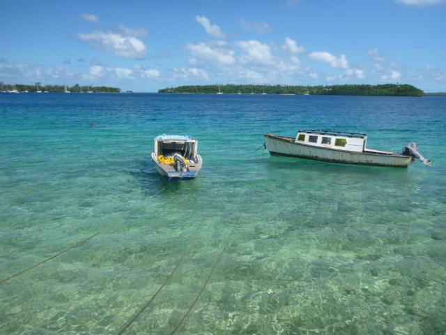 boats in neiafu harbor tonga