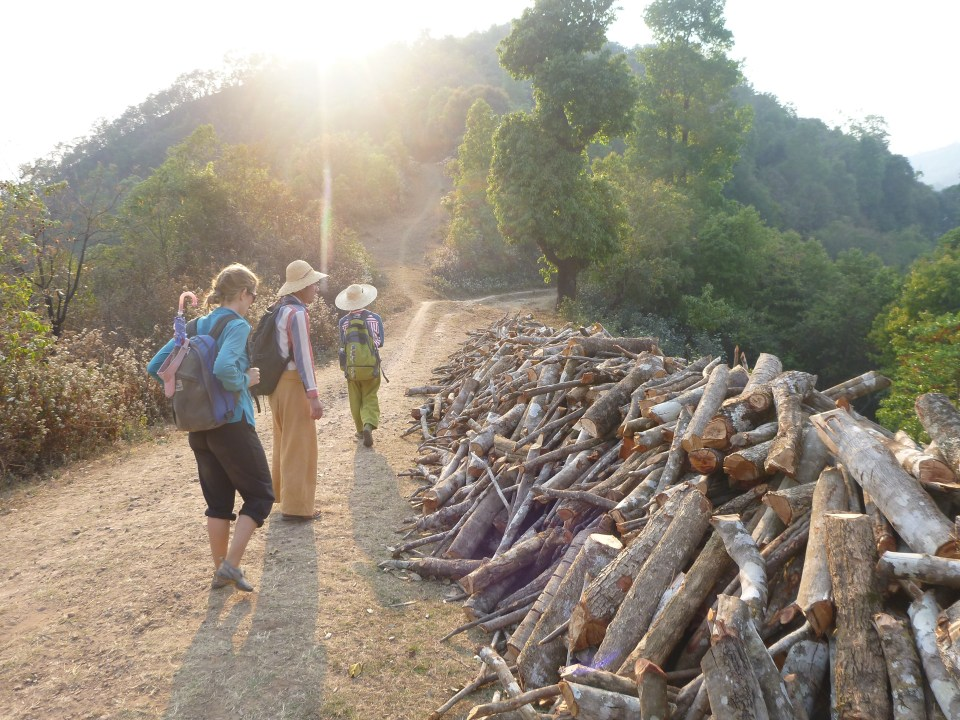 Firewood for drying tea - Trekking in Myanmar village - Brianna and Rob - On the Horizon Line Travel Blog