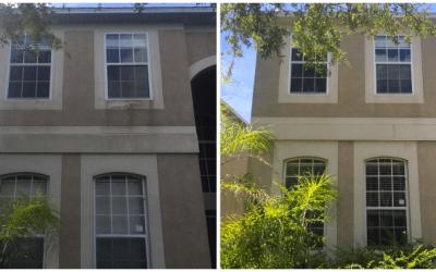 Softwash exterior of house Apollo Beach FL