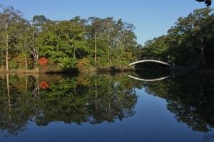 大沼八つ橋 (1024x683)