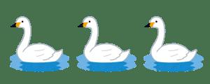 bird_hakuchouのコピー