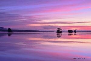 9月赤紫色の大沼-1