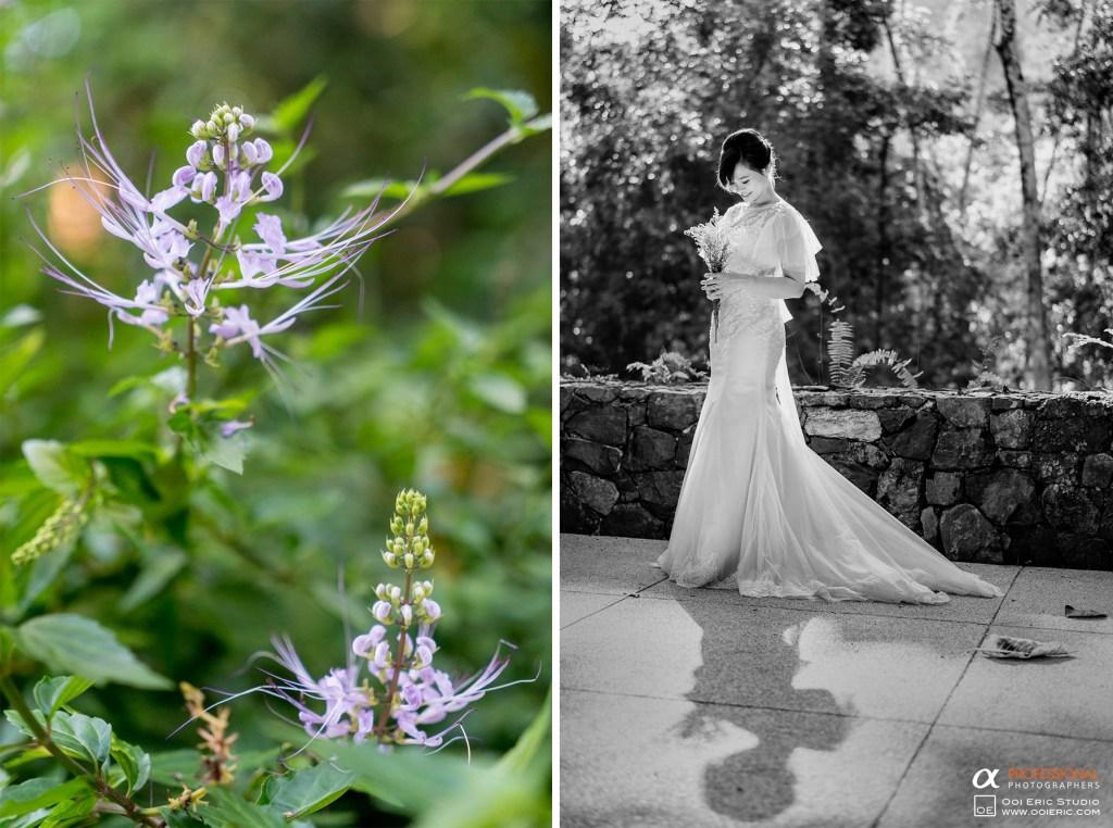 Calvin-Lisa-Datai-Langkawi-Couple-Portrait-Prewedding-Pre-Wedding-Engagement-Photography-Photographer-Malaysia-Kuala-Lumpur-Ooi-Eric-Studio-1