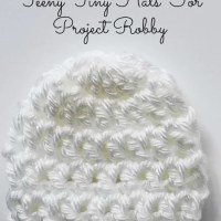 Project Robby - Featured Charity of the Month - August