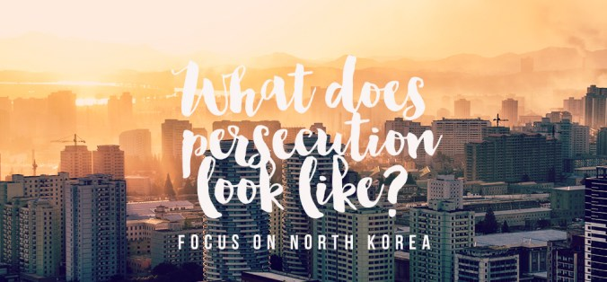 nk_persection30.08