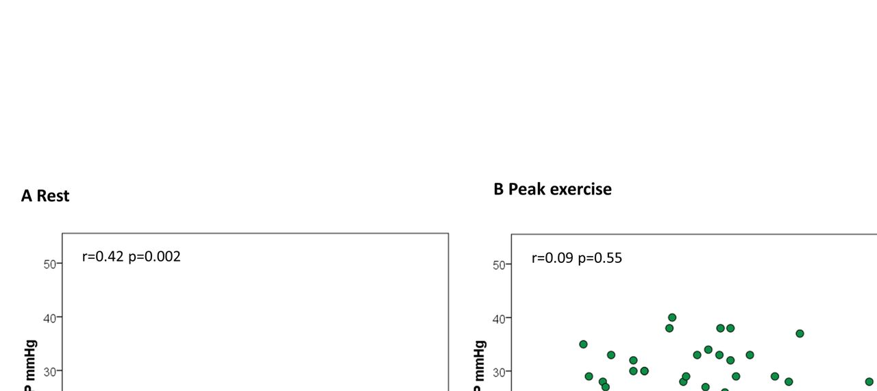 Cardiac remodelling and haemodynamic characteristics in primary