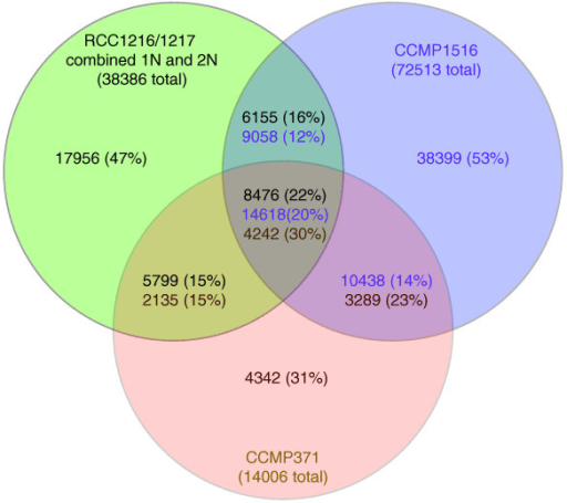 haploid vs diploid venn diagram