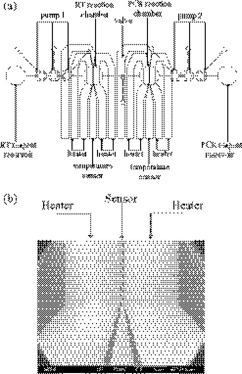 pcr temperature diagram