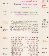 polychrome siddur sample