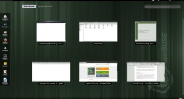 Figure 2: The Windows tab at work, displaying all the open windows