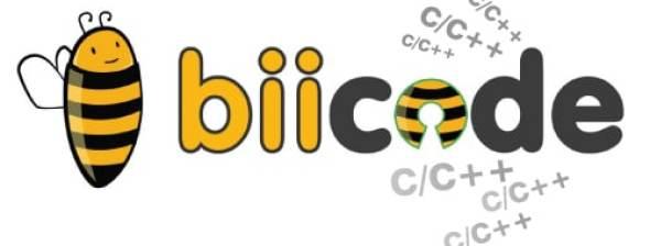 Bii code visual
