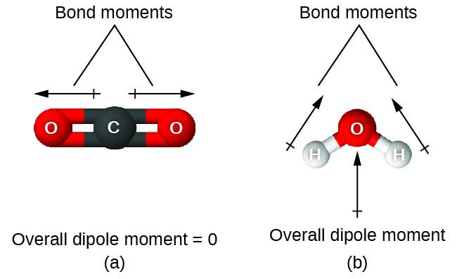 76 Molecular Structure and Polarity \u2013 Chemistry - molecule vs atom
