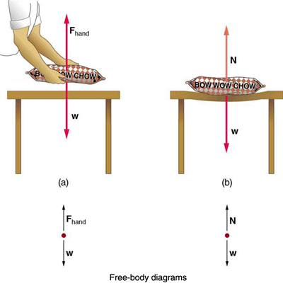 Normal, Tension, and Other Examples of Forces \u2013 College Physics