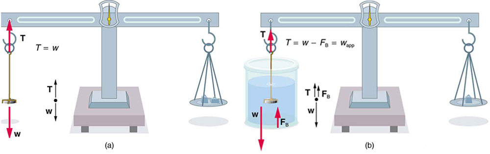 Archimedes\u0027 Principle \u2013 College Physics