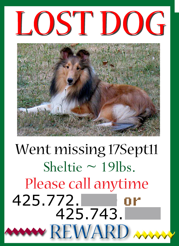 ABOUT ODR Capturing at-large/lost/missing dogs - Lost Dog Flyer Examples