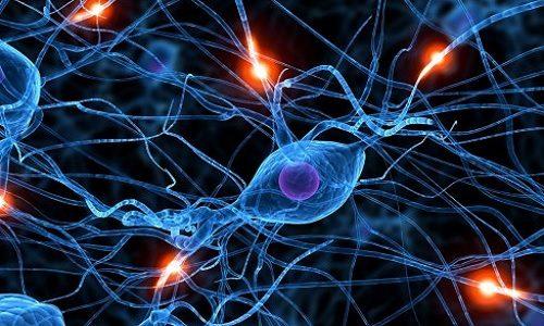 brain_synapse_hero