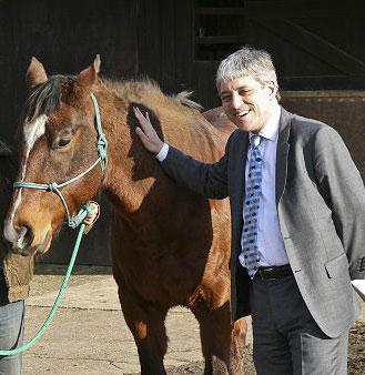 bercow-pony