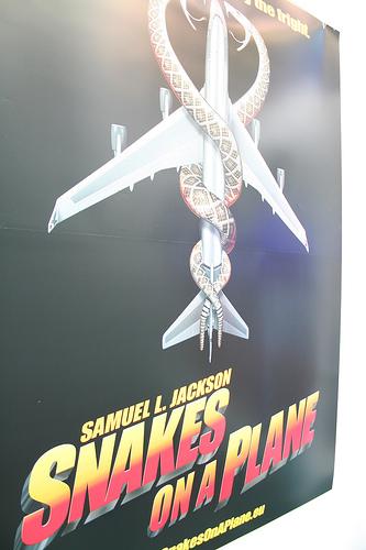 snakes plane photo