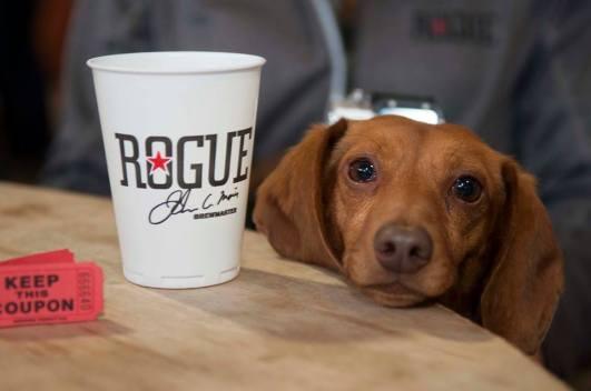 Rogue Brewer's Memorial Ales Festival Dog