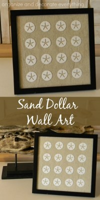 Framed Sand Dollar Wall Art - Organize and Decorate Everything