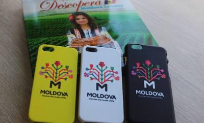 huse cu logo turistic al Molovei