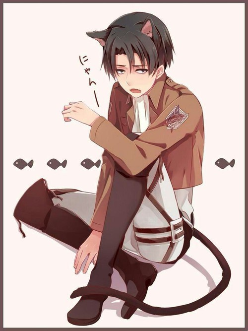 Phone Call From Your Girl Wallpaper Love Me For Once Neko Levi X Reader Short Story By