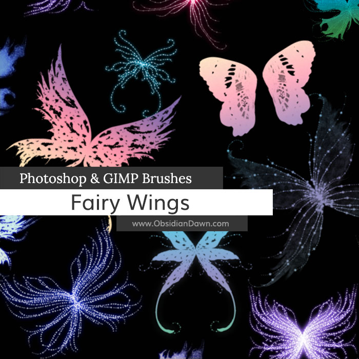 fairy wing brushes