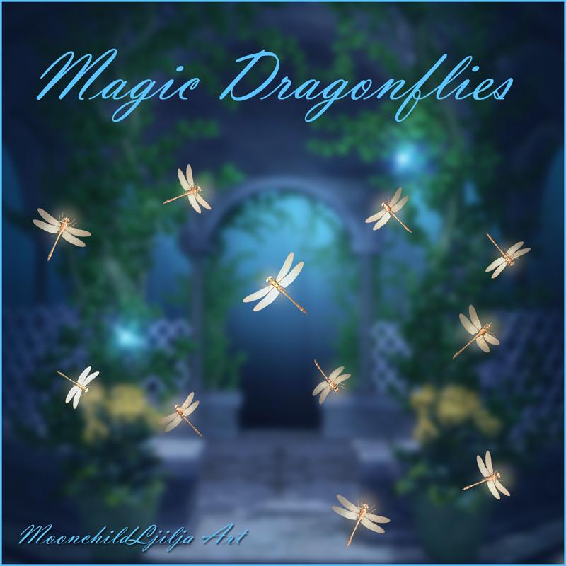 Time Wallpaper Quotes Magic Dragonflies Free Png By Moonchild Ljilja On Deviantart