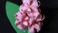 Origami Hyacynthus