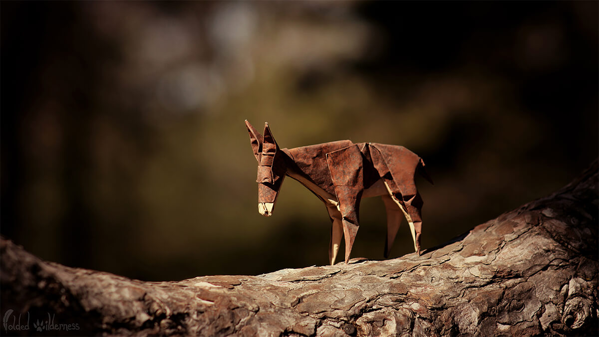 Origami Donkey